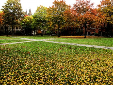 1200px-Yale_Campus_Green_(4138541531)